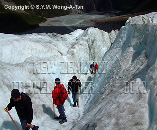 Guided glacier walk at Fox Glacier on the West Coast on the South Island of New Zealand